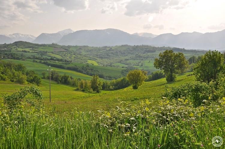 53-landschaft